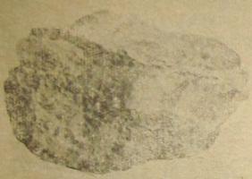 Рис. 55 Прожилок халцедона в эффузивной породе