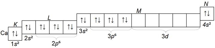 структура электронных слоев атома кальция Ca