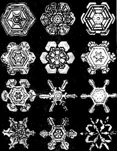Снежинки скелетные кристаллы льда