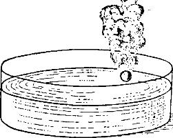 Шарик натрия на поверхности воды