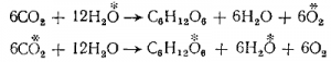 Изотопы нерадиоактивных элементов