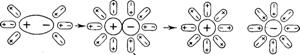 Диссоциация полярных молекул в растворе