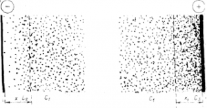 Схема концентрационной поляризации при электролитическом рафинировании меди