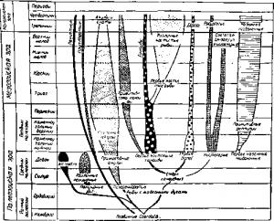 Схема эволюционного развития рыб
