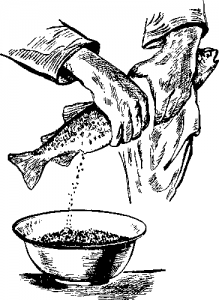 Искусственное оплодотворение рыб