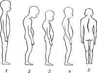 Гигиена органов движения