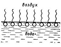 Образование молекулами ПАВ мономолекулярного слоя